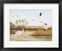 Framed Whooping Cranes - A