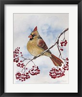 Framed Cardinal And Winter Berries - B