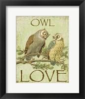 Framed Owl Love