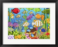 Framed Colorful Sea Life