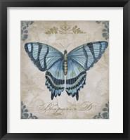 Framed Bleu Papillon - D