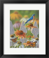 Framed Bluebird Butterflies Cone Flowers