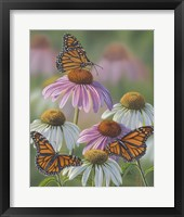 Framed Three Monarchs