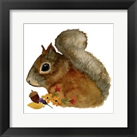 Framed Squirrel