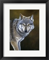 Framed In The Eyes Of The Wolf