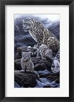 Framed Mother & Cubs