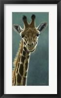 Framed Giraffe Beauty
