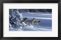 Framed Strength Of The Wolf Is The Pack