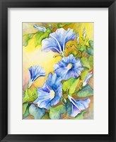 Framed Morning Glory Vine