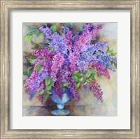 Framed Varity of Lilacs