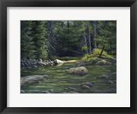 Framed Forest River