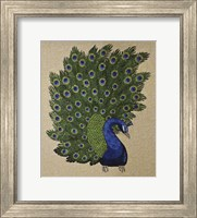 Framed Peacock Stitched