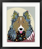 Framed Rough Collie