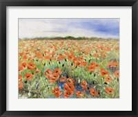 Framed Blooming Poppy 3