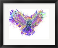 Framed Electric Owl 1