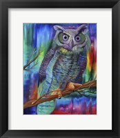 Framed Rainbow Owl