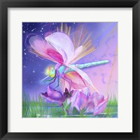 Framed Dragonfly Lotus