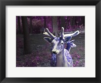 Framed Purple Deer