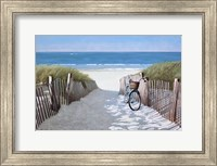 Framed Beach Bike 2