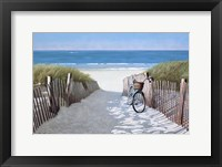 Framed Beach Bike 2