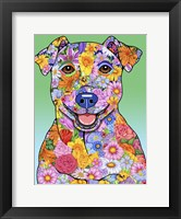 Framed Flowers Jack Russell