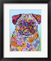 Framed Flowers Pug
