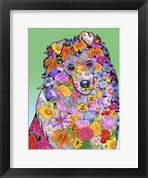 Framed Flowers Shetland Sheepdog