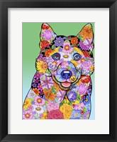 Framed Flowers Siberian Husky