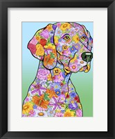 Framed Flowers Weimaraner