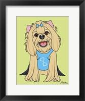 Framed Yorkshire Terrier Showcut