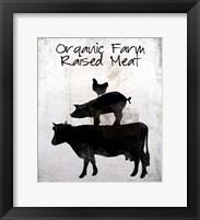 Organic Farm Raised Meat Framed Print