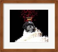 Framed Royal Love Pup - Shi Tzu
