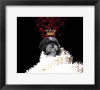 Framed Royal Love Pup - Shi Tzu