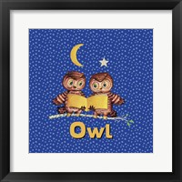Framed Cute Baby Owls