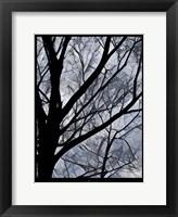 Framed Patchwork Branches