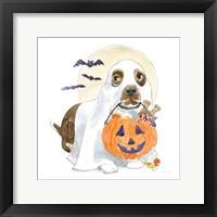 Framed Halloween Pets III