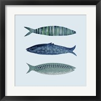 Framed Fish