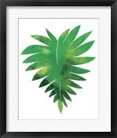 Framed Palm Leaf 1