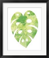 Framed Palm Leaf 2