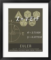 Framed Euler