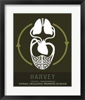 Framed Harvey