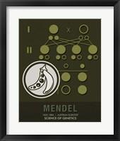 Framed Mendel