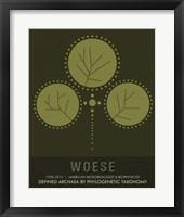 Framed Woese