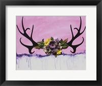 Framed She Antlers