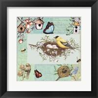 Framed Birds & Bees Color-Blocks Green