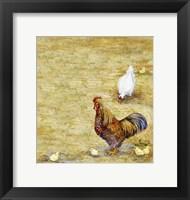 Framed Chicken Yard