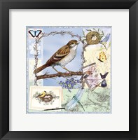 Framed Natural Bliss Birds-Blue