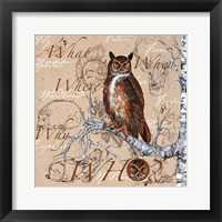 Framed Owl In The Wildnerness