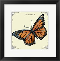 Framed Butterfly Monarch