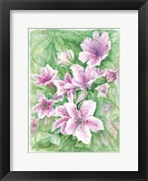 Framed Pink Azaleas Watercolor